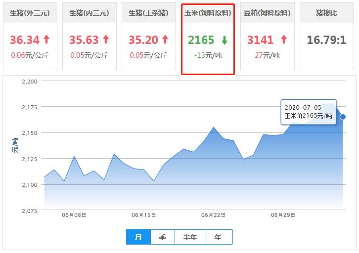 7月5日玉米价格:拍卖热情高涨,玉米报价仍高位运行!