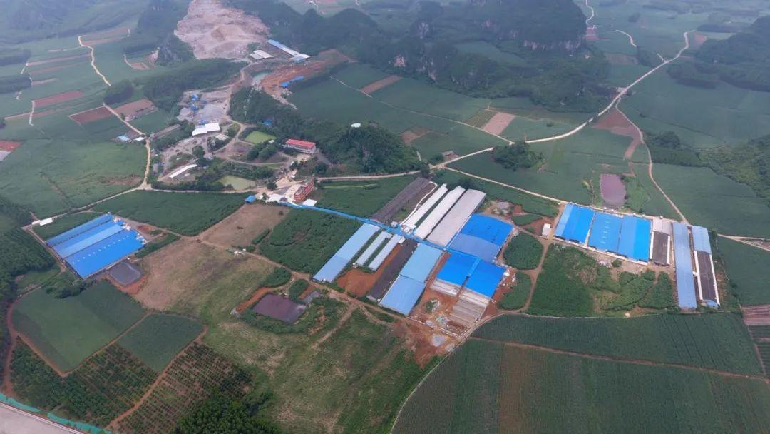500-5000头规模猪场,如何抓住这3年养猪机会?