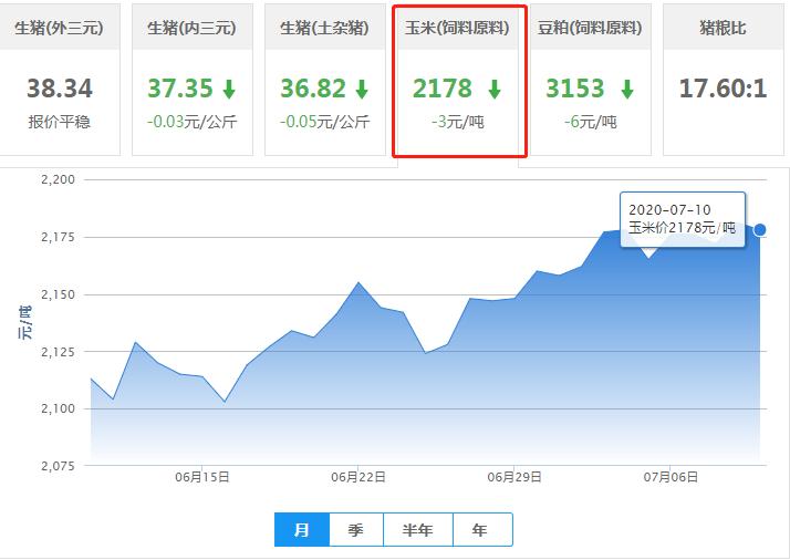 """7月10日玉米价格:玉米将""""乘风破浪""""?业内:上涨动力足!"""