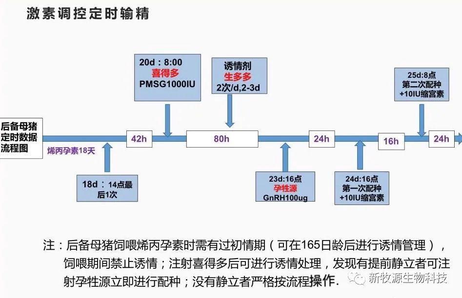 猪场批次化生产管理方案(3)