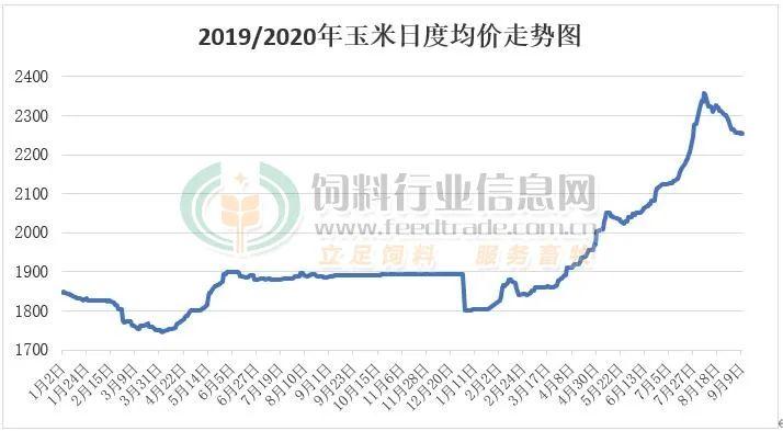 玉米1.26元/斤,还能向上冲?饲料已涨价,畜禽肉价格是否会被波及?